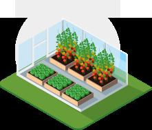 Serre agricole